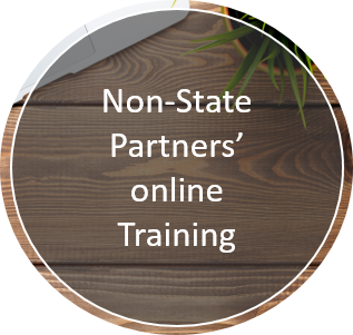 Non-State Partners' online Training