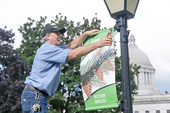Keith Peterson hangs new banners of state symbols on the Capitol Campus