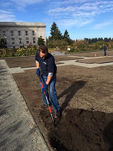A Buildings & Grounds employee begins digging a trench for a below-ground irrigation line.