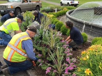 Workers planting flowers around Tivoli Fountain on the Capitol Campus.
